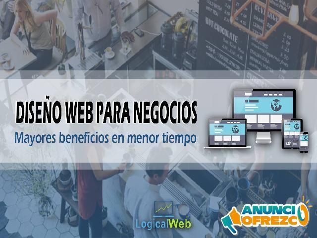 Servicio Profesional de Diseño Web
